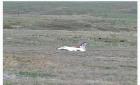 奥巴马眼睁睁看着一架F16坠毁在面前(组图)