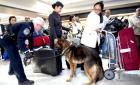 中国游客携3万美金入境美国 全部被没收(图)