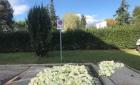 意大利佛罗伦萨一华人在停车场晾晒卷心菜被罚款!